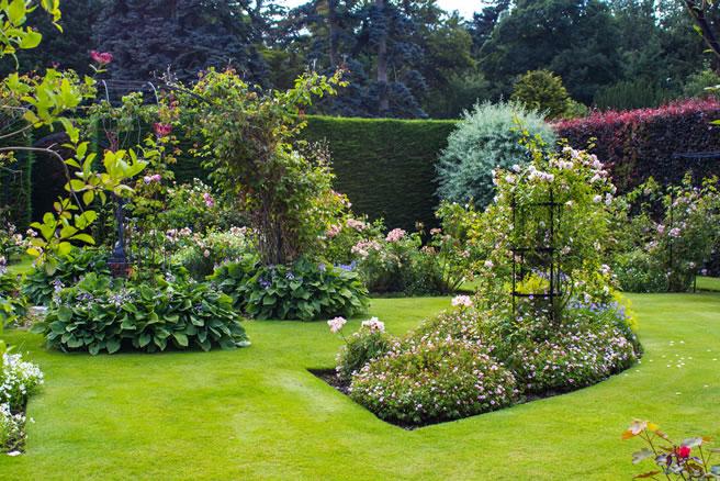 création et aménagement jardin